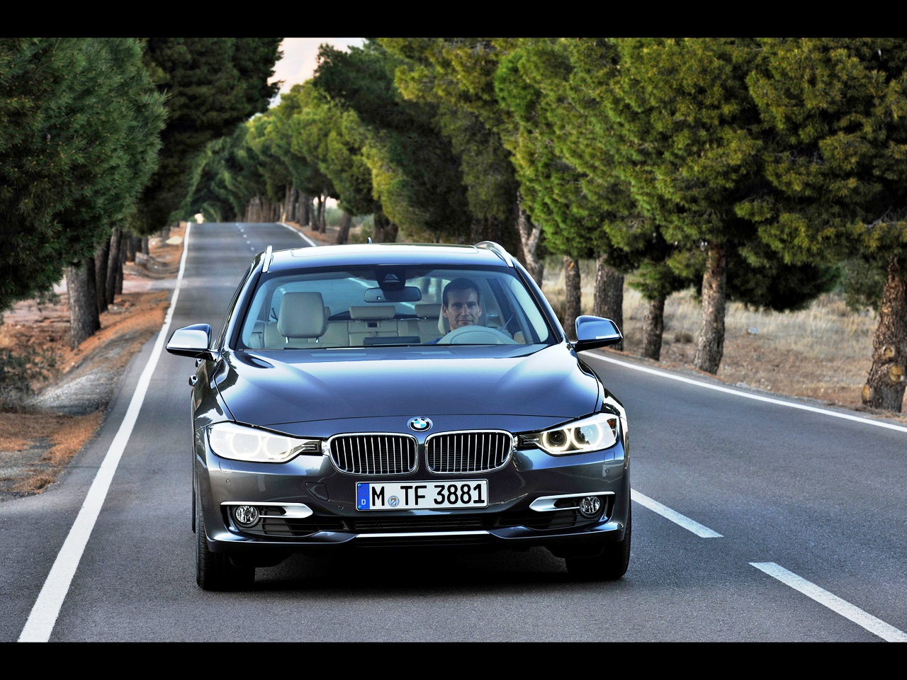 BMW 3 series 330d 2012 photo - 9