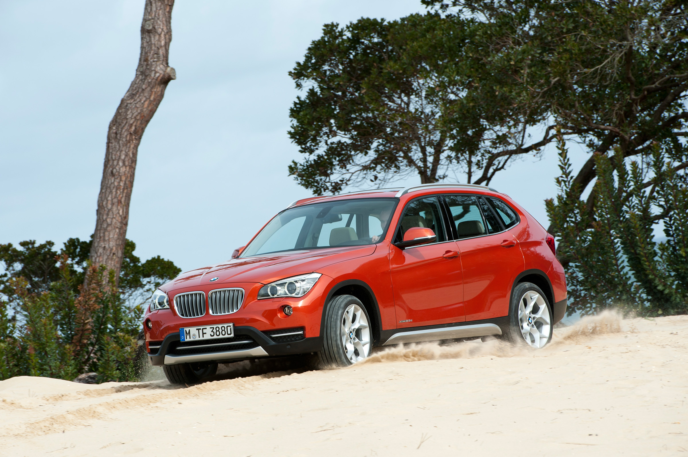 BMW X1 xDrive25d 2013 photo - 9
