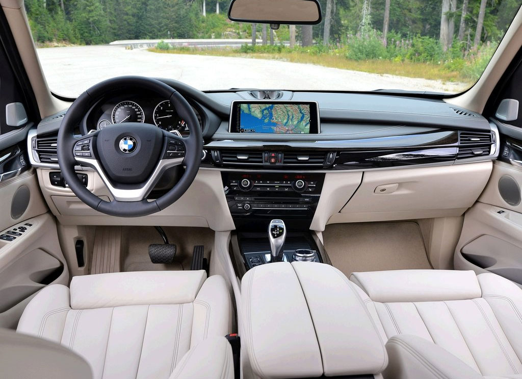 BMW X5 sDrive25d 2013 photo - 7