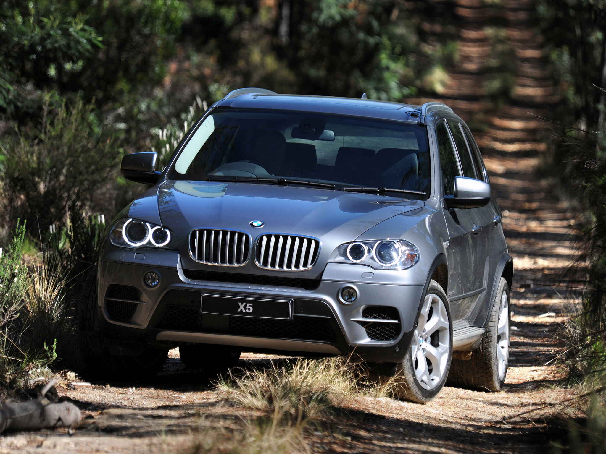BMW X5 xDrive50i 2010 photo - 5