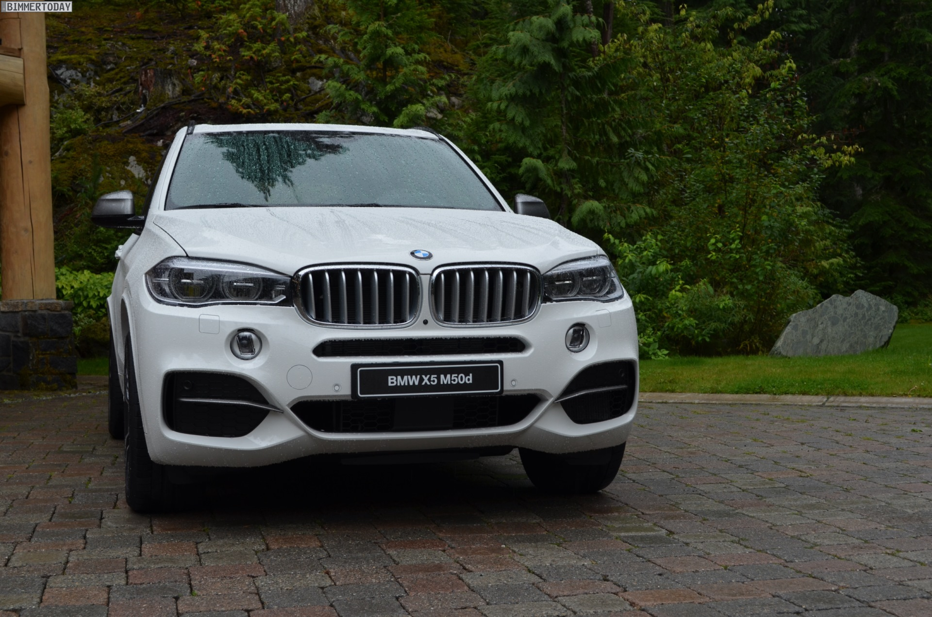 BMW X5 xDriveM50d 2014 photo - 8