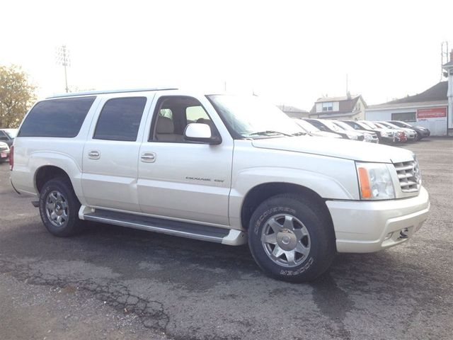 Cadillac Escalade 5.3 2005 photo - 10