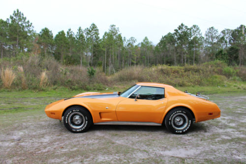 Chevrolet Corvette 5.7 1975 photo - 6