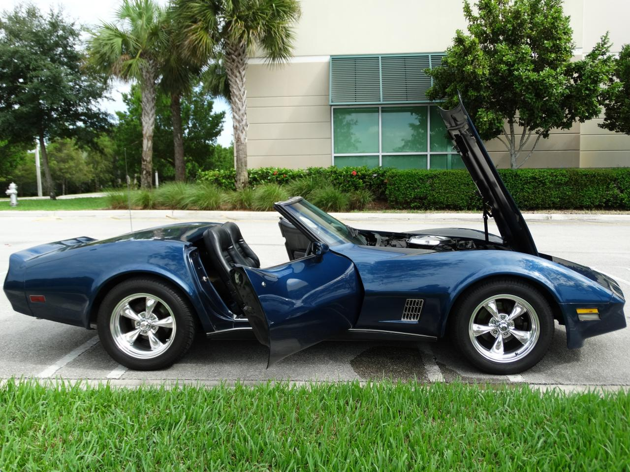 Chevrolet Corvette 5.7 1981 photo - 6