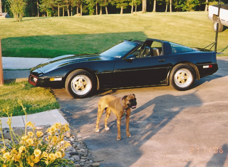 Chevrolet Corvette 5.7 1985 photo - 11