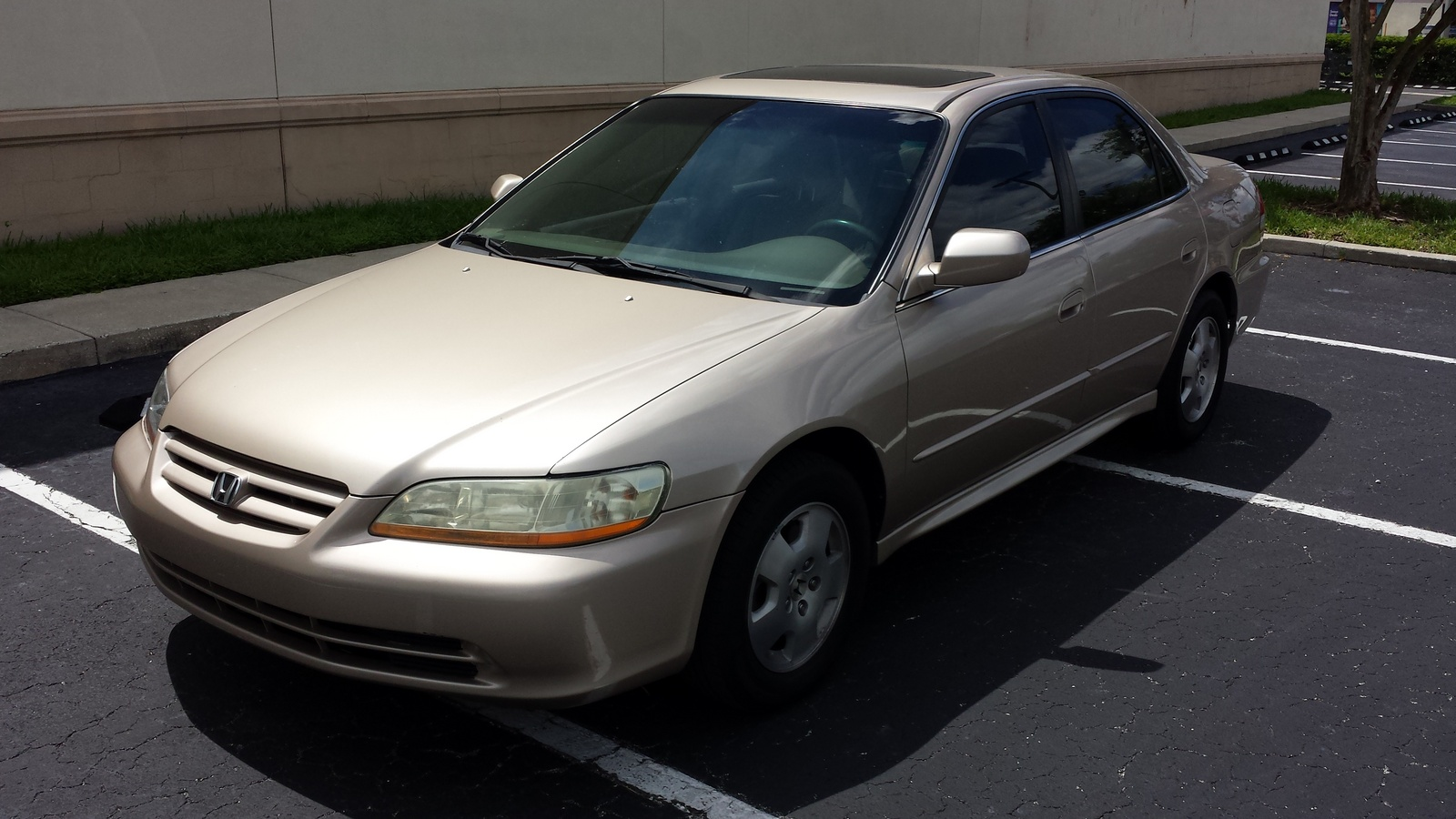 Honda Accord 3.0 2001 photo - 9