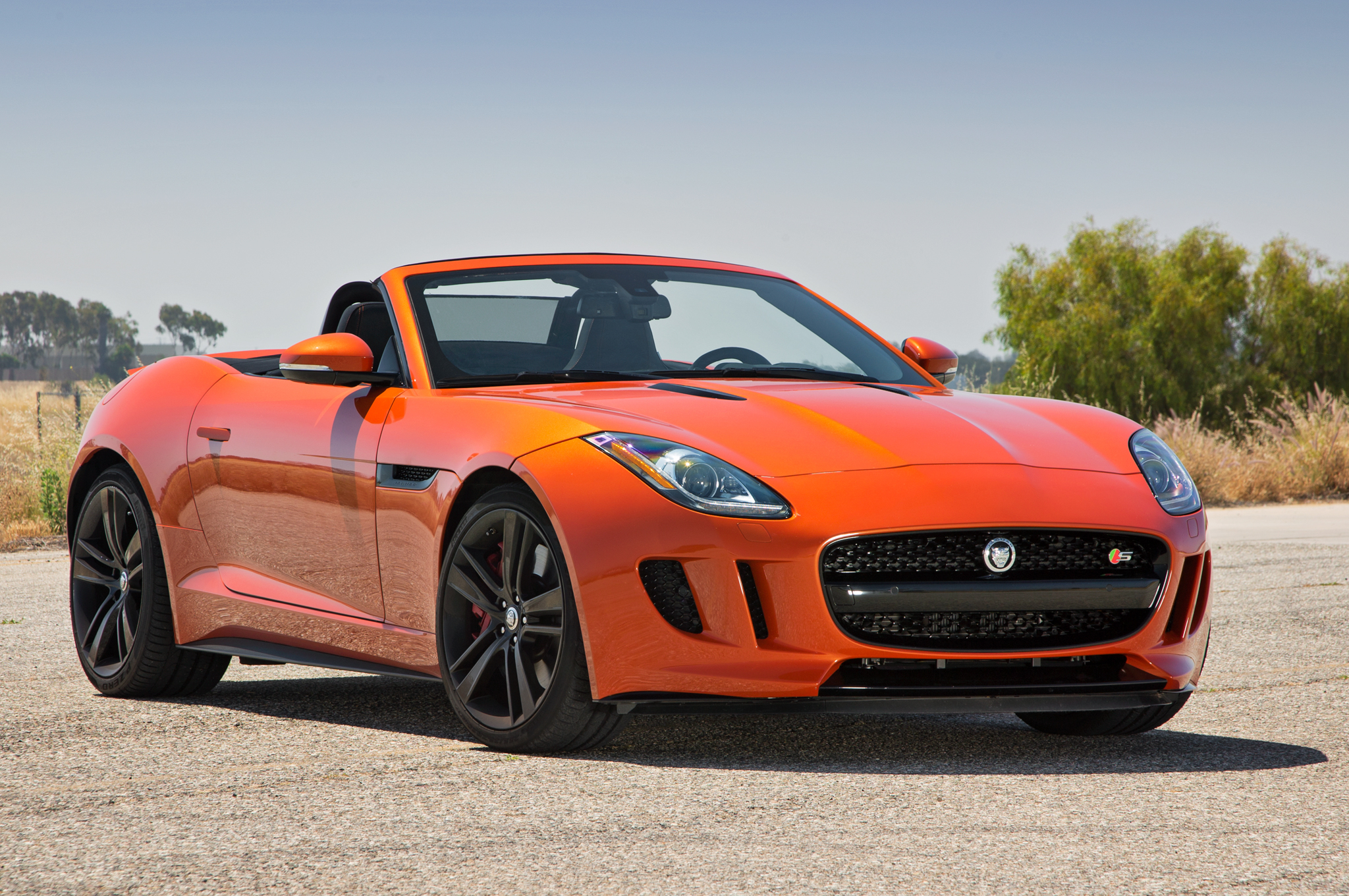Jaguar F-Type S 2014 photo - 12