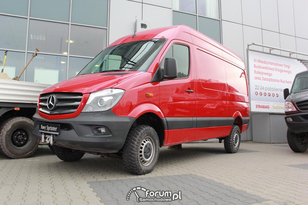 Mercedes-Benz Sprinter 309 2013 photo - 6