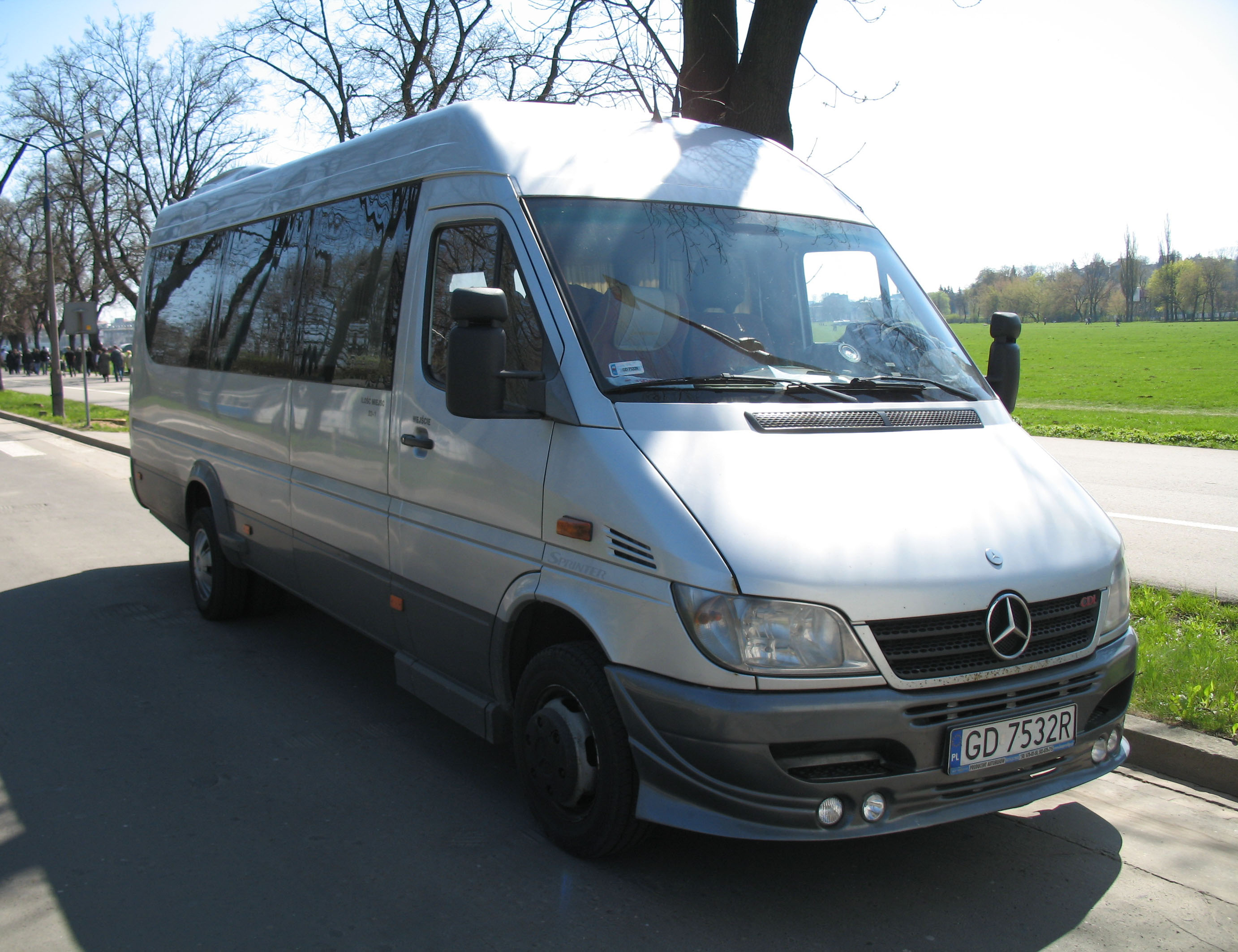 Mercedes-Benz Sprinter 413 2010 photo - 1