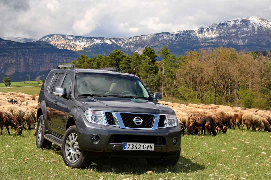 Nissan Pathfinder 3.0 2014 photo - 12