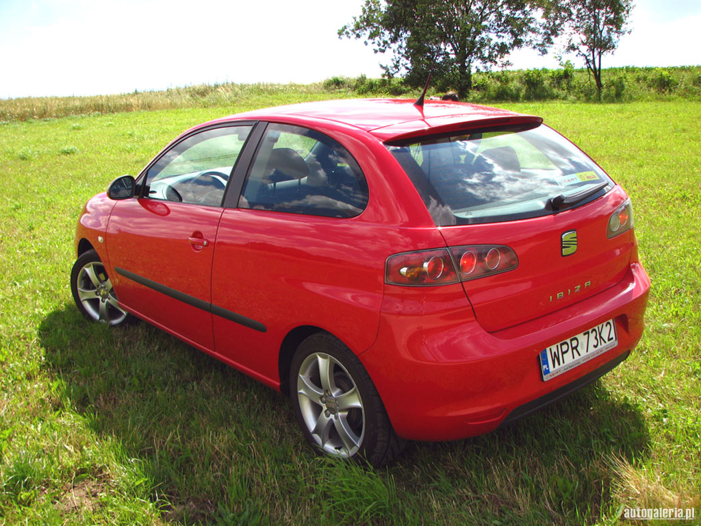 seat ibiza 2 0 2006 technical specifications interior and exterior photo. Black Bedroom Furniture Sets. Home Design Ideas