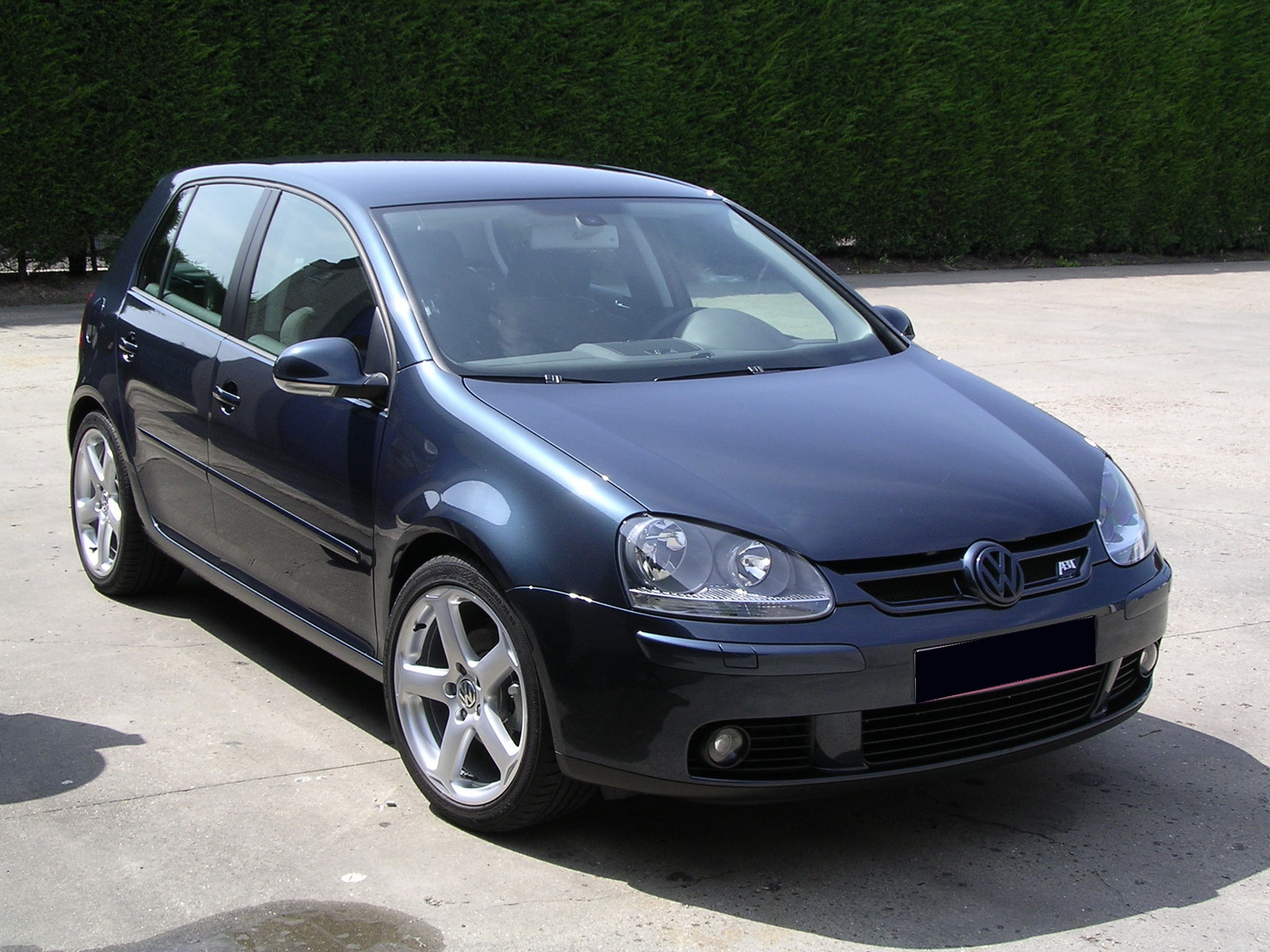 Volkswagen Golf 1.9 2010 photo - 5
